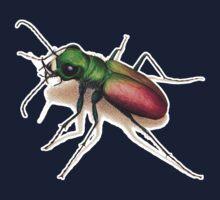 Beetle Kids Clothes