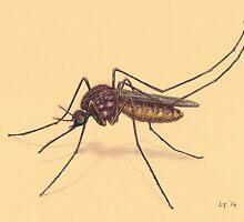 Mosquito by Lars Furtwaengler