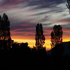 Chile, Sunset near Pucon, Caburgua by Daidalos