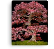 RMB Canvas Print