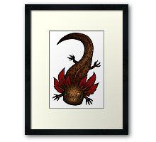 Wild Type Axolotl  Framed Print
