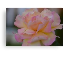 The Perfect One Canvas Print