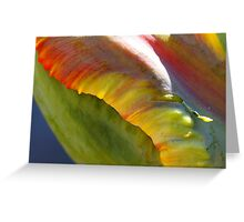 The Parrot tulip Greeting Card