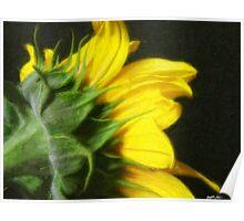 Sunflower 1 Painterly Poster