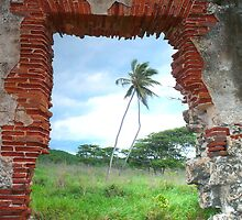 Wildnerness Beach Ruins - Puerto Rico by Caitlin Connors