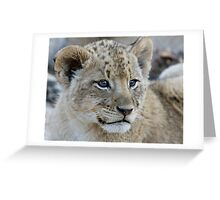 Male Lion Club Greeting Card