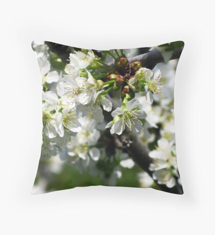 Up Into the Cherry Tree Throw Pillow