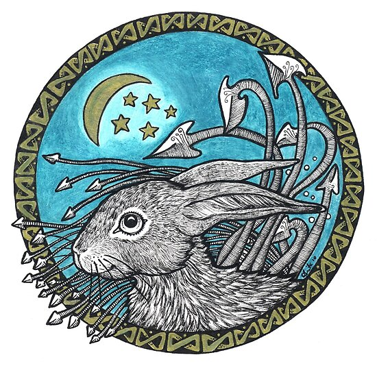 Little Blue Leveret by Anita Inverarity