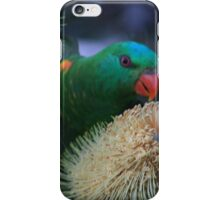 Even The Birds He Gives Provision For iPhone Case/Skin