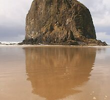 Haystack Rock- Oregon Coast by Shannon Sneedse