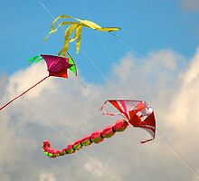 Kites on high by davridan