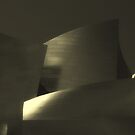 Disney Hall - LA by Antonio Zarli