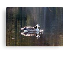 Water World - Sunbathing Metal Print