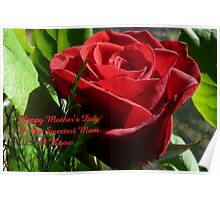 Rose for Mother's Day,..card Poster