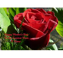 Rose for Mother's Day,..card Photographic Print