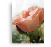 Mixed Cut Roses 4 Canvas Print