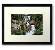 Tangle Falls, Jasper National Park Framed Print