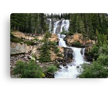Tangle Falls, Jasper National Park Canvas Print