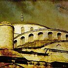 Blue Mosque by Dariusz Gudowicz