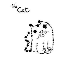 Ink splashes cat Photographic Print
