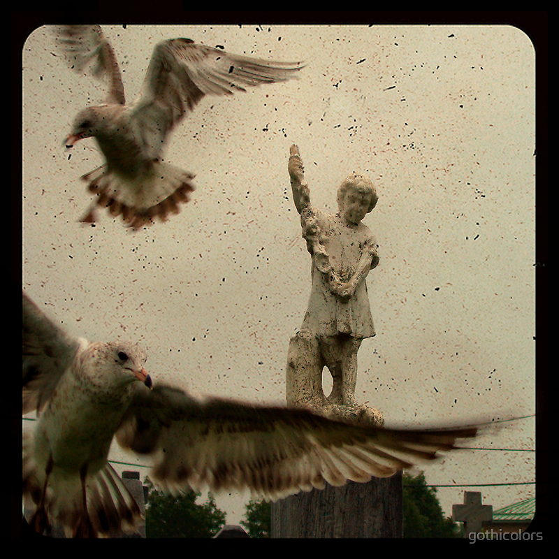 Gothic Pigeons by gothicolors