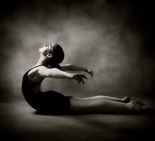 Swan Dive by Jennifer S.