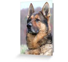 War Dog Greeting Card