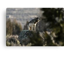 Howling Wolf Touch My Soul Canvas Print