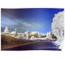Geyser road in infrared Poster