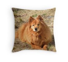 'Cindy Likes...' Throw Pillow