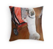 Gus going for a stroll Throw Pillow