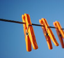 three orange pegs by Clare Colins