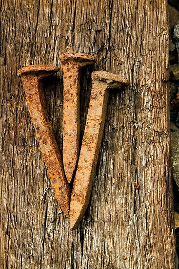 Three Nails by Mark Van Scyoc