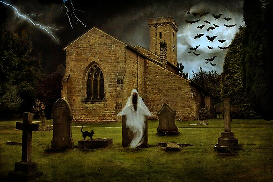 The Ghost in the Graveyard by Ann  Van Breemen