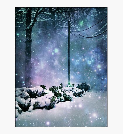 A lot like Narnia Photographic Print
