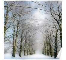 Winter in White Poster
