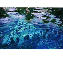 Silver River Depths & Reflections Photographic Print