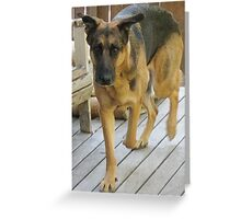 Big Dog Walking Greeting Card
