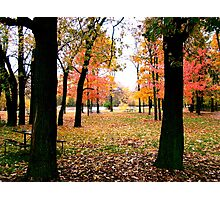 Autumn in the Park Photographic Print