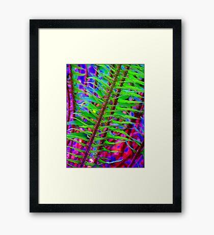 Psychedelic ferns  Framed Print
