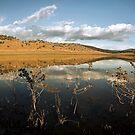 Thorn Lake by David Haworth