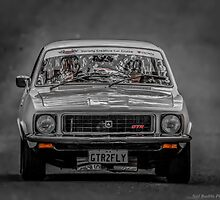GTR Torana by Neil Bushby