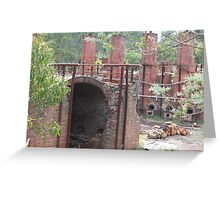 Days Gone By 2 Greeting Card