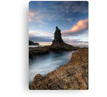 Point Canvas Print