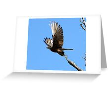 take off - Winton, North East Victoria Greeting Card