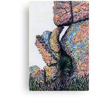Cliff Boulders at Cochise Stronghold Canvas Print
