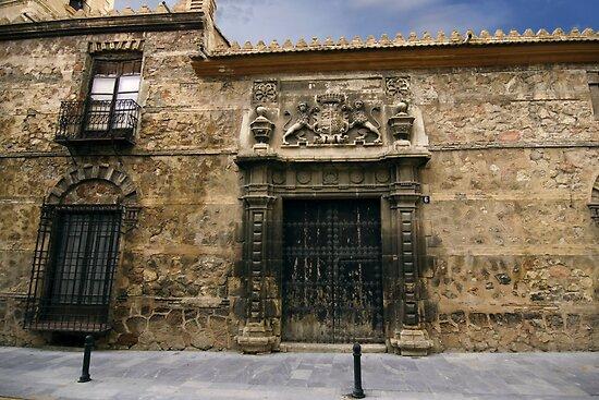 palacio de los condes de San Julián by ser-y-star