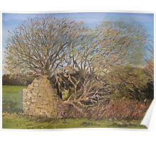 """Withy Barn"" - The Somerset Levels Poster"