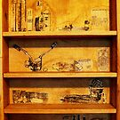 THE SHELF by ANNETTE HAGGER