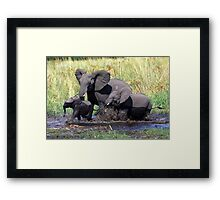 Family of elephants crossing water stream Framed Print